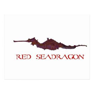 Save Seadragon Postcard