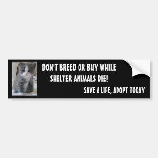 SAVE SHELTER ANIMALS... BUMPER STICKER