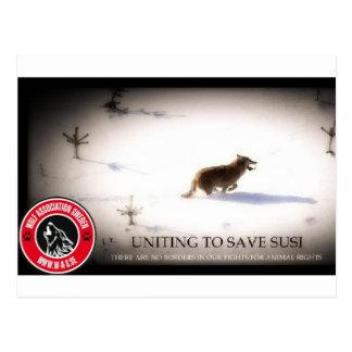 Save SUSI Postcard