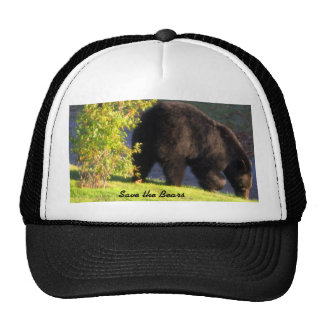 Save the Bears Hat