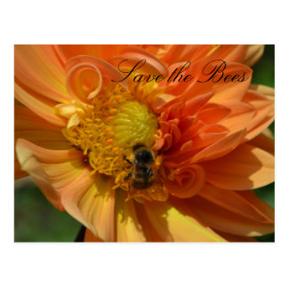 Save the Bees... Dahlia Postcard