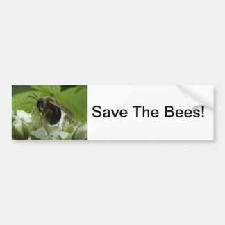 Save The Bees on Blackberry Flower Bumper Sticker