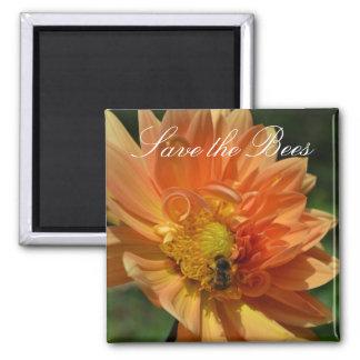 Save the Bees... Peach Dahlia Magnet