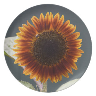 Save The Bees Sunflower Melamine Plate