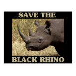 Save the Black Rhino Postcards