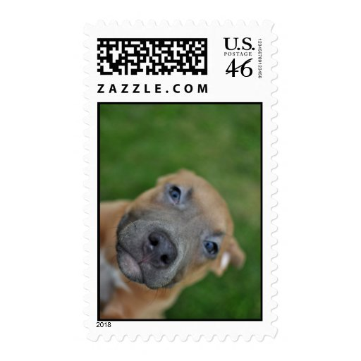 Save the Breed Stamp