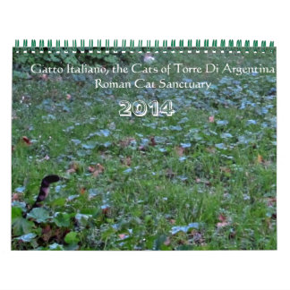 Save the Cats of Roman Sanctuary 2014 Calender Calendar