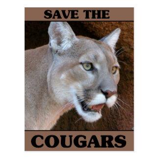 Save the Cougar Postcard