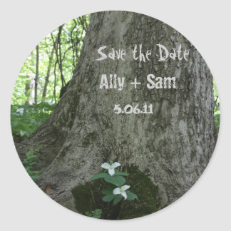 Save the Date  2White Flower Tree Trunk Stickers