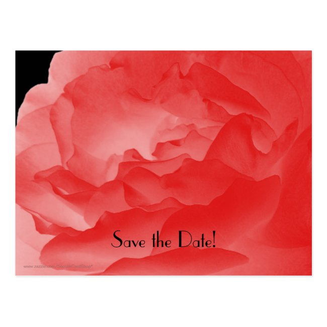 Save the Date 60th Birthday Party Coral Pink Rose