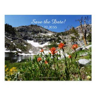 Save the Date 65th Birthday Announcement Postcard