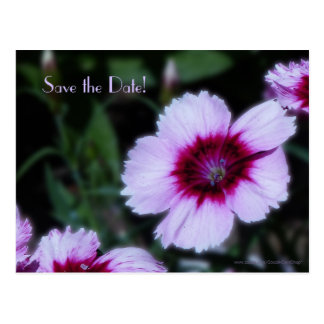 Save the Date 80th Birthday Party Purple Flowers Postcard