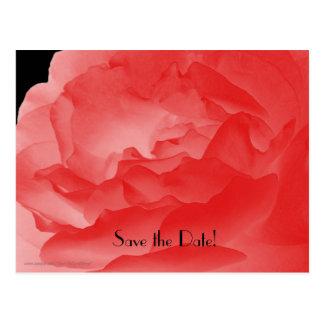 Save the Date 90th Birthday Celebration Postcard