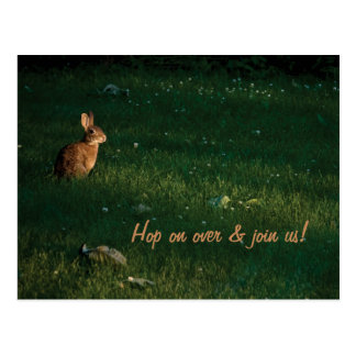 Save the Date All You Bunny Rabbits Postcard