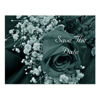 Save the Date Baby's Breath & Rose - Teal Postcard