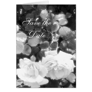 Save the Date+Black and White Roses Card