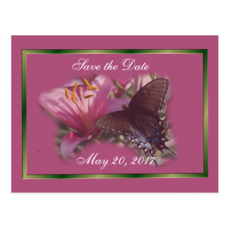 Save-the-Date Black Butterfly on Fushia -customize Postcard