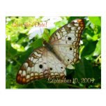 Save the Date Butterfly on Jasmine Postcard