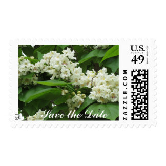 Save the Date Catalpa Postage Stamps