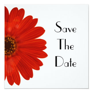 Save The Date Daisy Card