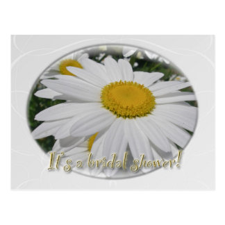 Save the Date Daisy Wildflower Bridal Shower Postcard