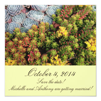 Save the date!  Echeveria and Jelly Beans Card