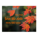 Save the date for this Fall Postcard