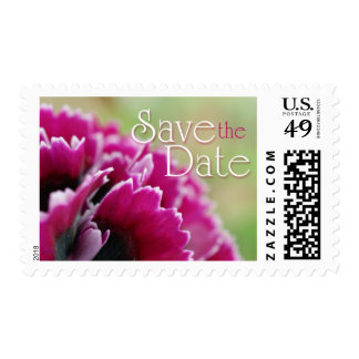 Save the Date fuchsia flower photography stamps