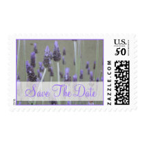 Save The Date lavender flowers Postage