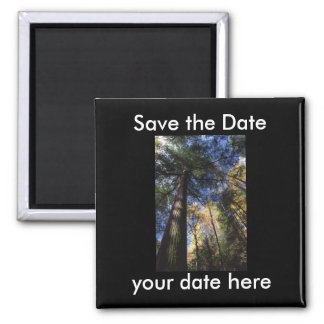 Save the Date Magnet 2 Inch Square Magnet