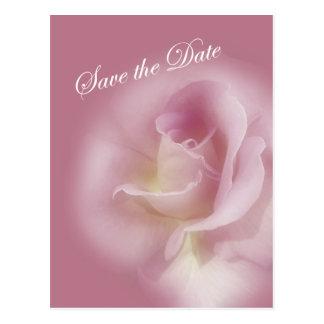 Save the Date - Mauve Rose - TBA Postcard