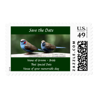 Save the Date Mr and Mrs Postage