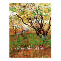 Save the date, Orchard in Blossom Postcard