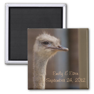 Save the Date Ostrich Photo Magnet