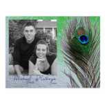 Save the Date - Peacock Post Card