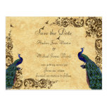 Save the Date Peacocks Post Card