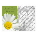 Save the Date Photo Wedding Announcement Post Card Postcard