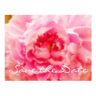 Save the Date Pink Painted Peony Postcard