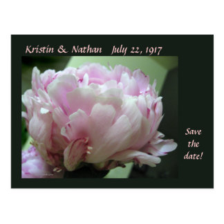 Save the Date Pink Peony Wedding Postcard