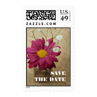Save The Date Postage - Daisy In Apothecary Bottle