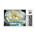 SAVE THE DATE! Postage Stamps White Rose