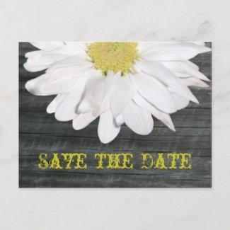Save The Date Postcard - Daisy & Barnwood postcard