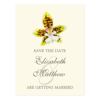 Save the Date Postcard painted orchid
