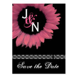 Save the Date Postcard - Pink Sunflower
