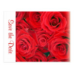 Save the Date postcard - Red roses