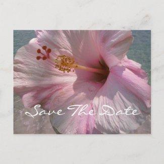 Save the Date Postcard - Tropical Beach Wedding postcard