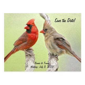Save the Date Redbirds Postcard