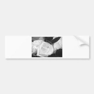 Save the Date Rose Bumper Sticker