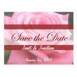 Save the date Roses Postcard