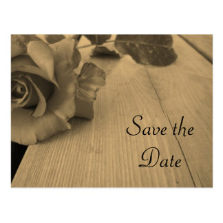 Save the Date Sepia Rose Postcard